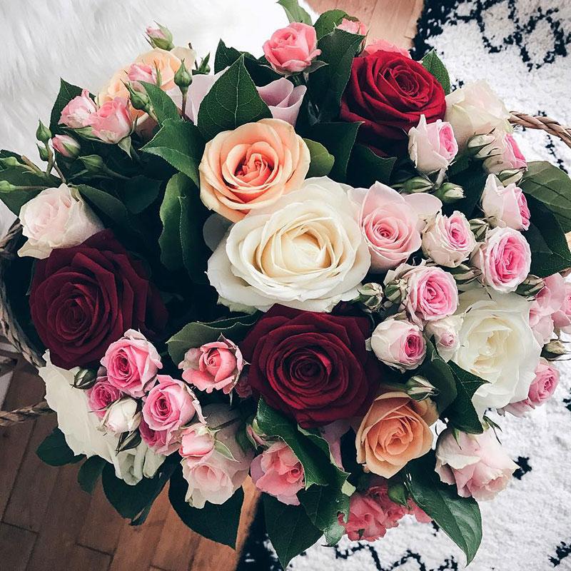 апостола картинки цветы красивые букеты розы на аву магму